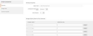 Attribute and Attribute Option in Magento 2