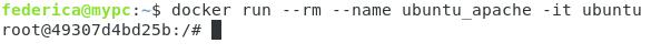 docker run --rm